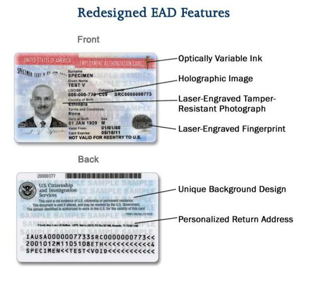 Redesigned EAD Card Features