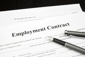 15198483 - employment contract document form with pen